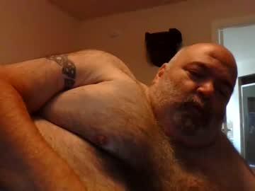 [09-11-19] disneybear public webcam
